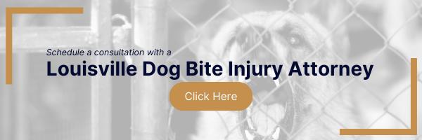 louisville dog bite attorney